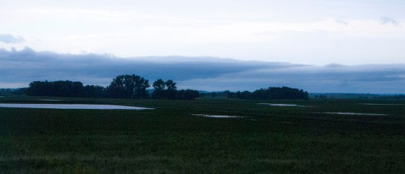 Recent rains have given us a rare opportunity to revisit the long-gone prairie potholes that were part of the original, post-glacial landscape.