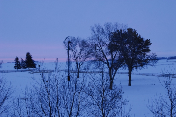 Dawn broke on a Winter Solstice on a neighbor's sheep pen.