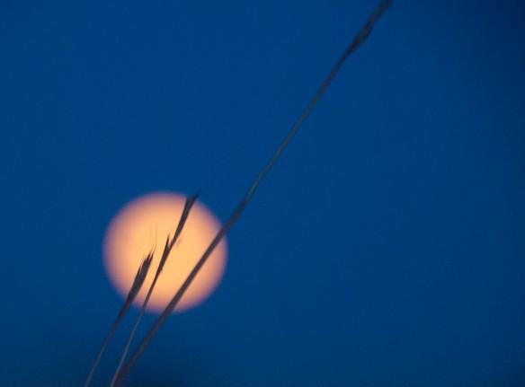 moon image2