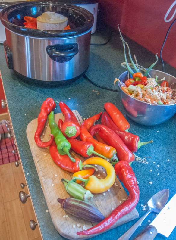 Prepping the peppers to start the gumbo. Note the okra?