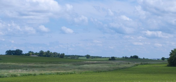 An example of an effective buffer strip in Chippewa County.