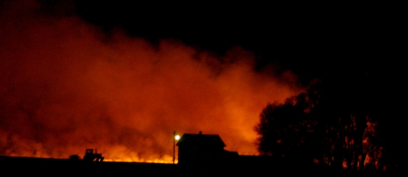 A controlled burn on a Renville area prairie lit the night sky.