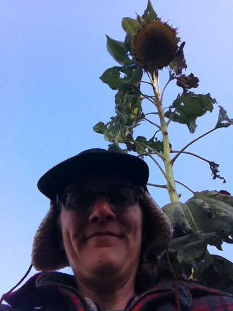 Gratuitous earflap cap-sunflower selfie
