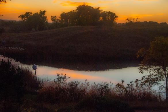 Ardie's Pond
