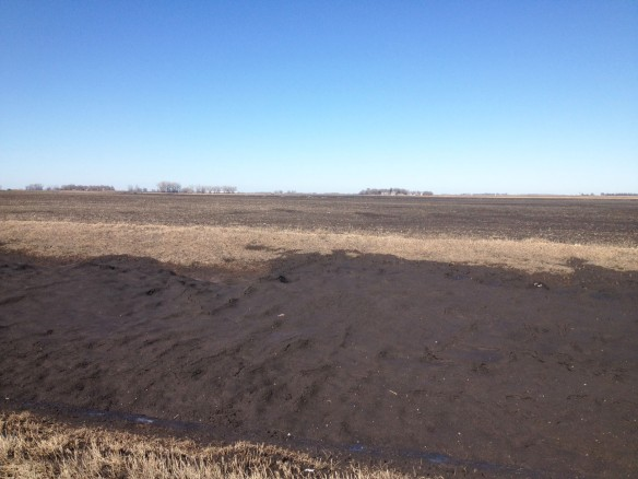 Along a roadside after the snow melted last spring ... a huge contribution of dirt from the adjacent field.
