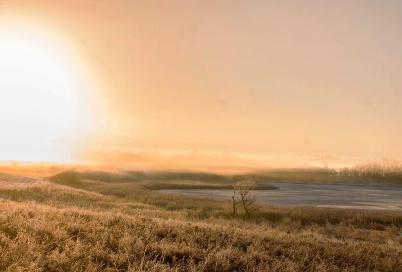 12.6.15 fog.sunrise10a