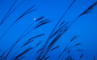 "September - ""Universe"" of a full moon in a bluestem prairie."