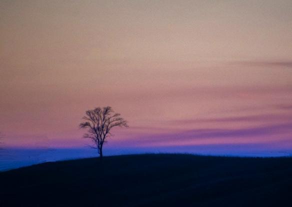 5.3.2020 sunset5a